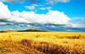 В выходные в Беларусь вернется жара