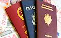 Украина разрабатывает законопроект о двойном гражданстве