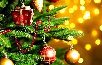 «Чарка и шкварка»: В Гродно установили необычные елки