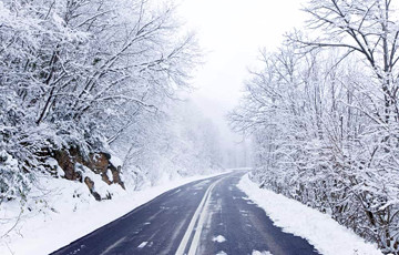 В первый день зимы в Беларуси будет до +1 градуса