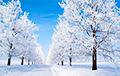 Синоптики: Зима придет в Беларусь к пятнице