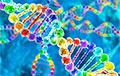 Генетики нашли эликсир долголетия