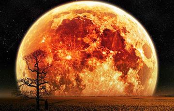 Жители Земли в ночь на 21 марта смогут наблюдать Червячную Суперлуну