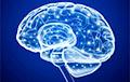 Как на самом деле работает человеческая память?
