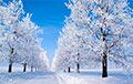 «Два года не видели таких снегопадов»