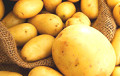 'No Potatoes Soon': Authorities Seems To Be Losing Battle For Harvest