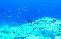 Ученые обнаружили на дне океана следы древних звезд