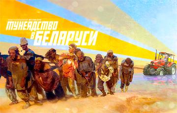 Ольга Николайчик: Лукашенко хочет поставить «счетчик» в каждый карман