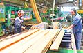 В Брестской области полностью остановили работу нескольких предприятий