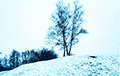 Фотофакт: В Минске выпал первый снег