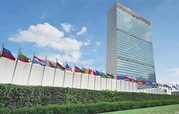 Мандат спецдокладчика ООН по Беларуси продлен еще на год