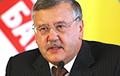 Что обещает кандидат в президенты Украины Анатолий Гриценко