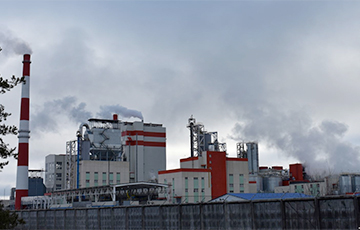 Хронология неудач завода, против которого протестуют в Светлогорске