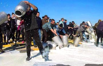 В Италии фермеры вылили десятки литров молока в знак протеста