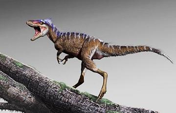«Мини-тираннозавр», найденный учеными, закроет пробел в 70 миллионов лет
