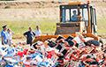 За пяць гадоў у Расеі знішчылі 36 тысячаў тонаў санкцыйных прадуктаў