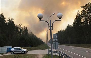 Лесной пожар на границе Беларуси и Литвы тушили более 340 спасателей
