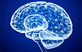 Ученые приблизились к созданию «кольца всевластья» для мозга