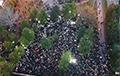 У Екацярынбургу трэці дзень працягваюцца пратэсты ў абарону сквера