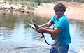 Аўстраліец, які злавіў голымі рукамі кракадзіла, стаў зоркай сеціва