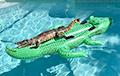 Фотофакт: Аллигатор плавает на надувном матраце в форме аллигатора