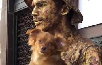 Видеохит: Cобака из Бразилии притворяется скульптурой и зарабатывает этим деньги
