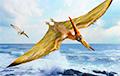 Ученые раскрыли еще один секрет древних птерозавров