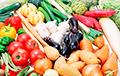 Сколько стоят фрукты, ягоды и овощи в Польше и Беларуси