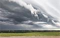 Видеофакт: В Гомельском районе ветер повредил 90 гектаров леса