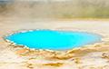 Навукоўцы вырашылі дылему курыцы і яйка аб з'яўленні жыцця на Зямлі