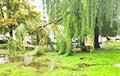 Фотофакт: Ливень затопил Могилев