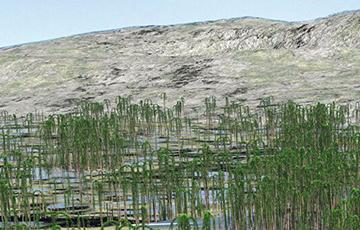 Палеантолагі знайшлі ў Кітаі самы буйны і старажытны скамянелы лес Зямлі