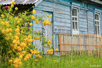 Пролетарская Коммуна: еще одна белорусская деревня, где скоро останутся лишь зайцы да дубы