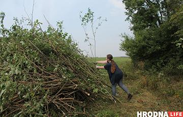 Как под Волковыском волонтеры восстанавливают старое иудейское и лютеранское кладбище