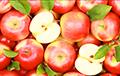 Беларусам на вока: у ЕЗ цяпер нельга завезці нават адзін яблык