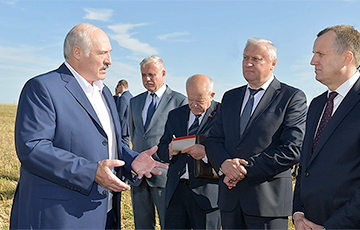 Lukashenka: Why Turning Up Soil For Dead Cows?