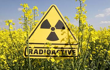 Над Северной Европой зафиксировано повышение концентрации радионуклидов