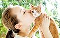 Американские ученые разрушили миф об одиноких кошатницах