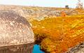 «Мертвая зона»: жительница Карелии рассказала о состоянии природы после ЧП под Северодвинском