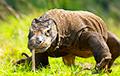 Ученые раскрыли загадку удивительной доисторической рептилии