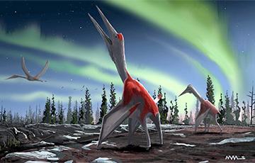 Ученые обнаружили в Канаде древних «ледяных драконов»