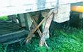 Фотофакт: В белорусском райцентре мост «укрепили» бревнами