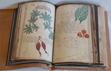 Почему ученые до сих пор не могут расшифровать манускрипт средневекового алхимика Войнича