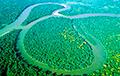 Невидимая война: племена Амазонии выступили против президента Бразилии