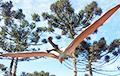 Ученые нашли в Австралии «железного дракона», летавшего через океаны