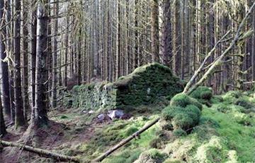 Ученые раскрыли тайну загадочного сооружения в лесах Шотландии