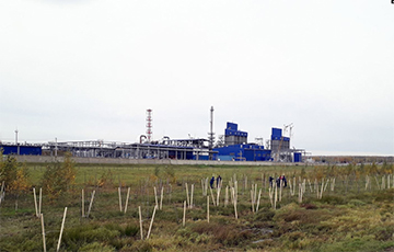 В Могилеве с помощью «зеленого щита» прячутся от химических предприятий