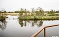 Сельчанину, который расчистил болото и получил штраф $100 тысяч, выставили новый счет