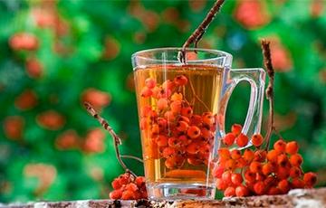 Ученые назвали напиток, эффективно замедляющий старение организма человека