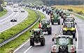Тысячи фермеров на тракторах устроили протест в Гааге